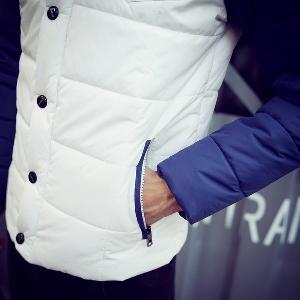 Ανδρικά    μπουφάν  για το φθινόπωρο και το χειμώνα σε 4 μοντέλα με πολυεστέρα και βαμβάκι