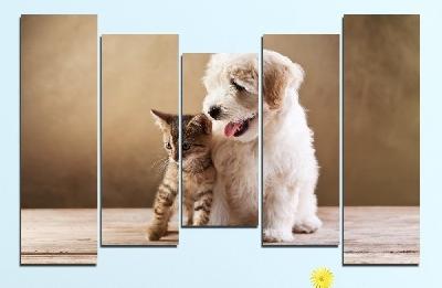 Картина пано за стена от 5 части с кученце и котенце - HD-168. Дизайн 4