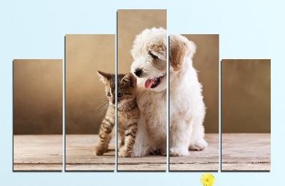 Картина пано за стена от 5 части с кученце и котенце - HD-168. Дизайн 5