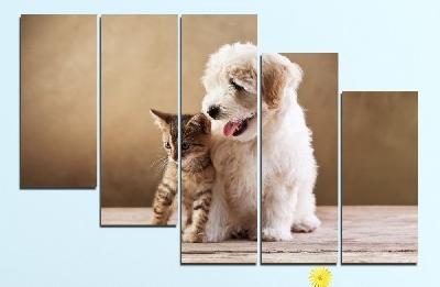 Картина пано за стена от 5 части с кученце и котенце - HD-168. Дизайн 7