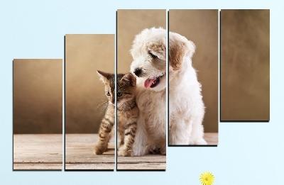 Картина пано за стена от 5 части с кученце и котенце - HD-168. Дизайн 8