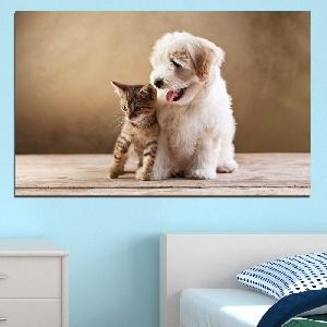 Картина пано за стена от 1 част с кученце и котенце - HD-168-1